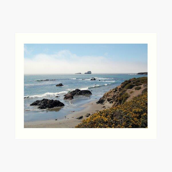 Fog Rolling Coastal Art Print