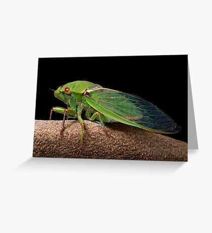 Greengrocer 2 Greeting Card