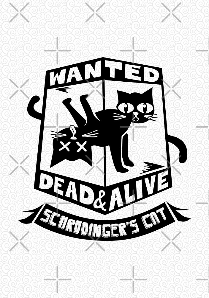 Schrodinger's cat is dead and alive by frail