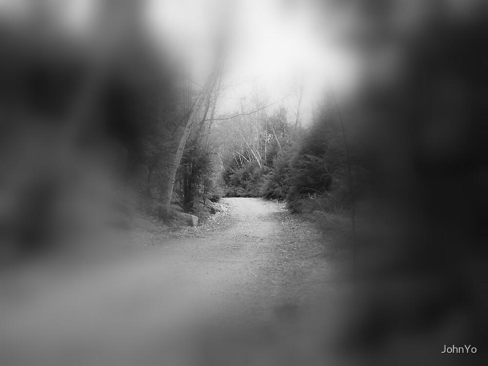 Pass of trees by JohnYo