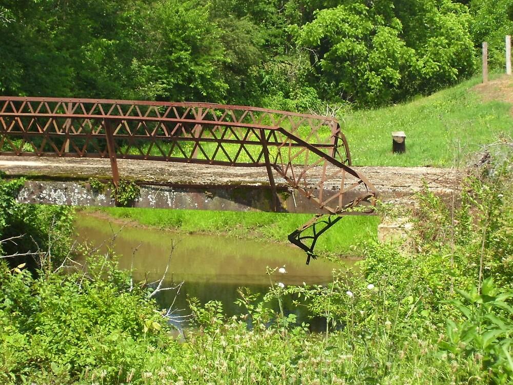 Rustic Bridge by DavidGates