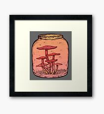 Mushroom Jar || Vintage Psychedelic Rainbow Illustration Framed Print