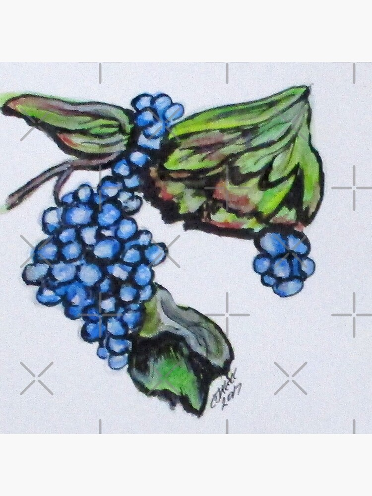Vine Grapes by cjkell