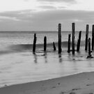Port Willunga Jetty at sunset in monochrome by Elana Bailey