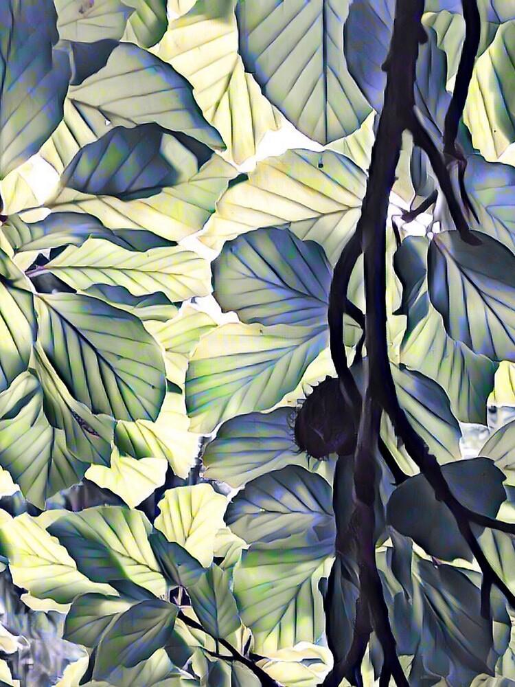 Beech. by Artroomstudio