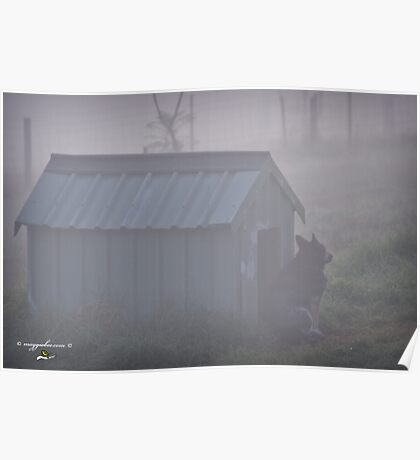 Guard in the Mist  Poster