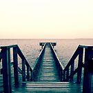 Split Toned Bridge by Joakim