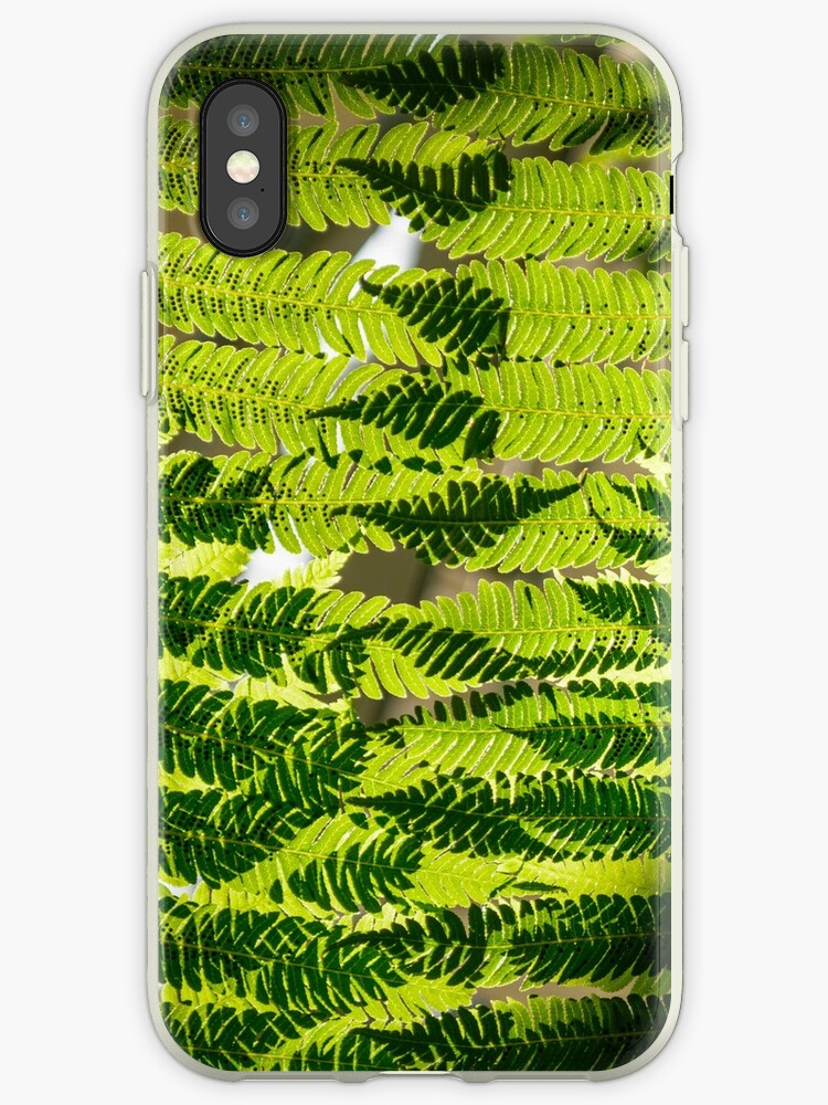 Ferns Overlay II by Eric Cook