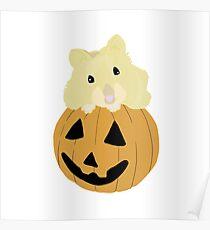 Hamster in a Pumpkin Poster