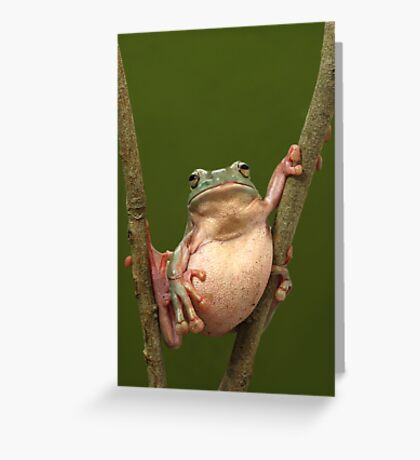 Stuffed Greeting Card