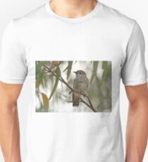 Shining Bronze Cuckoo  (499) T-Shirt