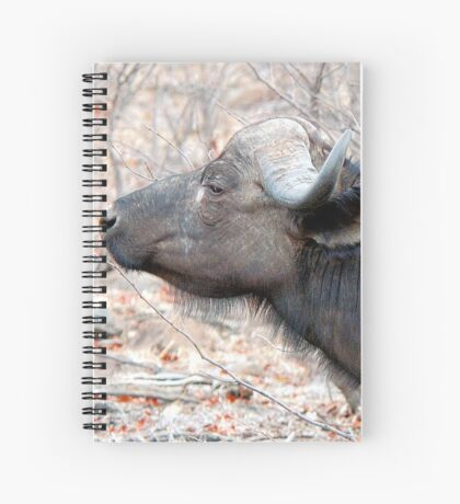 A COMPANION FOR THE LONELY BULL - The Buffalo - Syncerus caffer  Spiral Notebook
