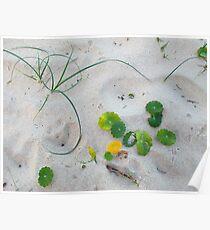Beach Art Poster