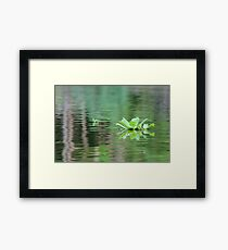 Reflections - Amazon River, Peru Framed Print