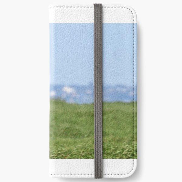 Australian Shelduck  (420) iPhone Wallet