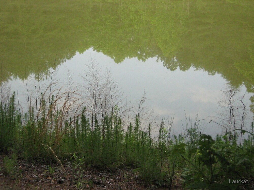 isolated pond near ballground  by Laurkat