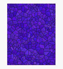Dragon Skin- Blue Stone Photographic Print
