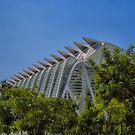City of arts and sciences, Valencia Espana. by naranzaria