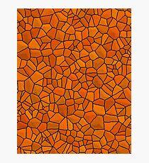 Dragon Skin- Orange Stone Photographic Print