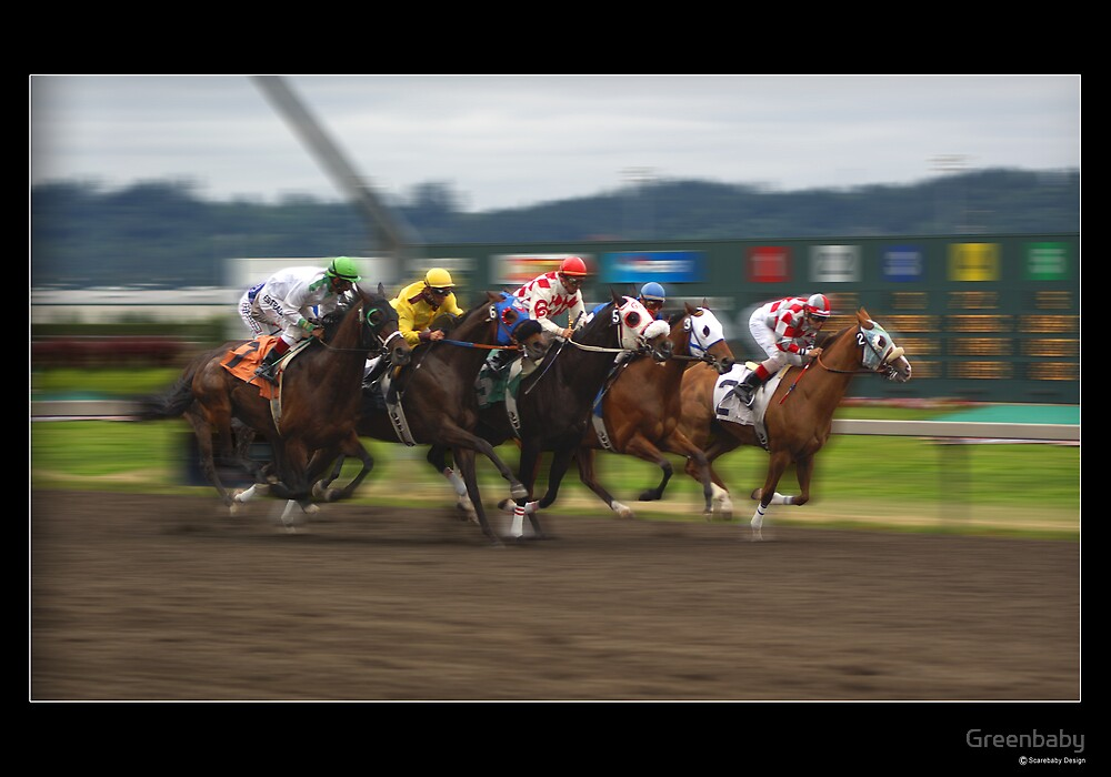 Stunning Thoroughbred Racing Print or Poster by Greenbaby