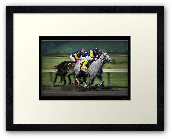 Thoroughbred Racing Print by Greenbaby