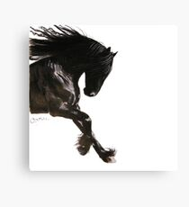 Horse PRiNT BLaCK FRieSiaN ' COOL DANCER ' by Shirley MacArthur Canvas Print
