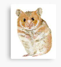 Little Furry Hamster Pet Canvas Print