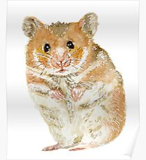 Little Furry Hamster Pet Poster