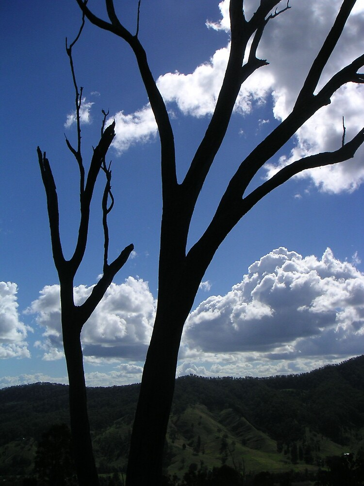 Beaudesert region in south-east Queensland by Ian McKenzie