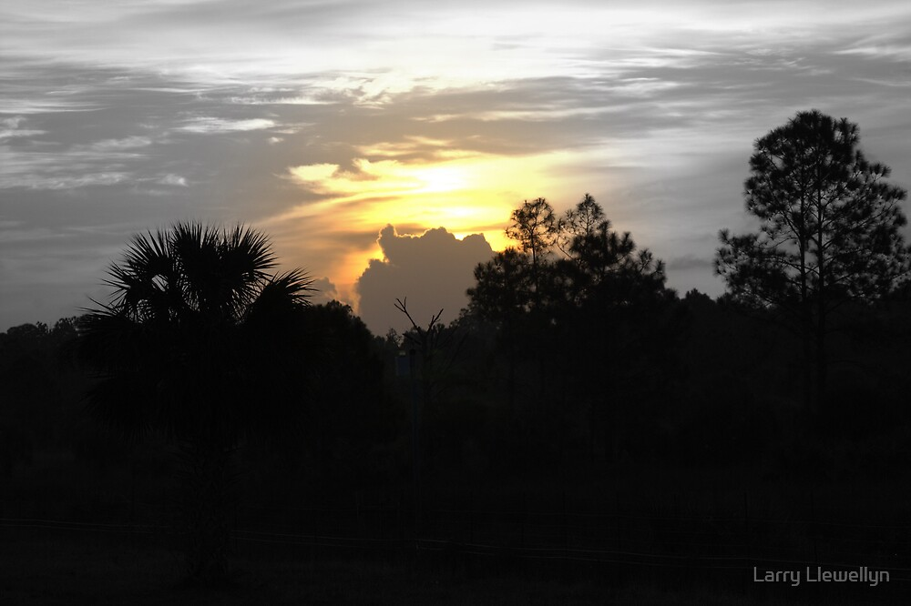 Sunrise over the Everglades at Alligator Alley, Florida by Larry Llewellyn