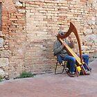 The Harpist Of San Gimignano by Fara