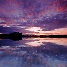 « Pink and Violet Skies » par Päivi  Valkonen