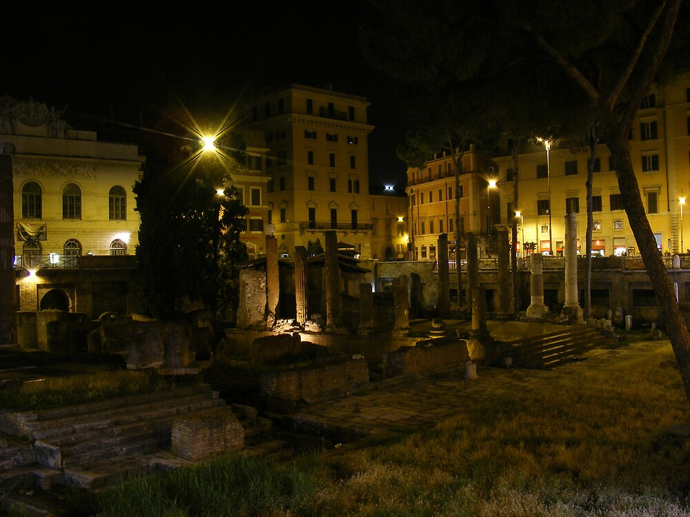 Largo di torre Argentina in Rome by valeinrete