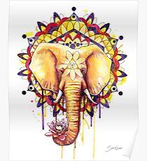 Elephant Mandala Poster
