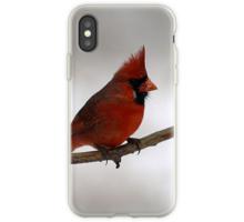 Quot Red Cardinal Ohio State Bird Quot Throw Pillows By Gabi