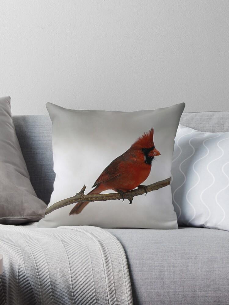 Red Cardinal~Ohio State Bird by Gabriele Swanson