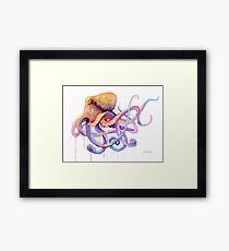 Octopus II Framed Print