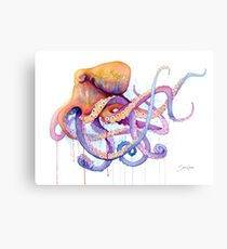 Octopus II Canvas Print