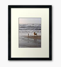 Here, doggy! Framed Print