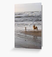 Here, doggy! Greeting Card