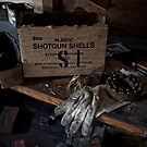 Plastic Shotgun Shells by PolarityPhoto