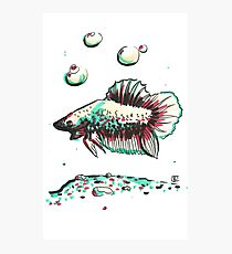 Marker Critters - Dragon Scale Photographic Print