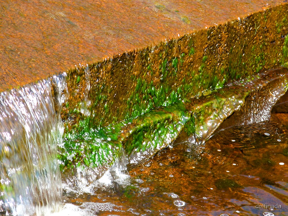copper, green and water by delfinada