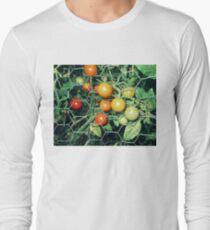 garden tomatos 07/21/17 Long Sleeve T-Shirt