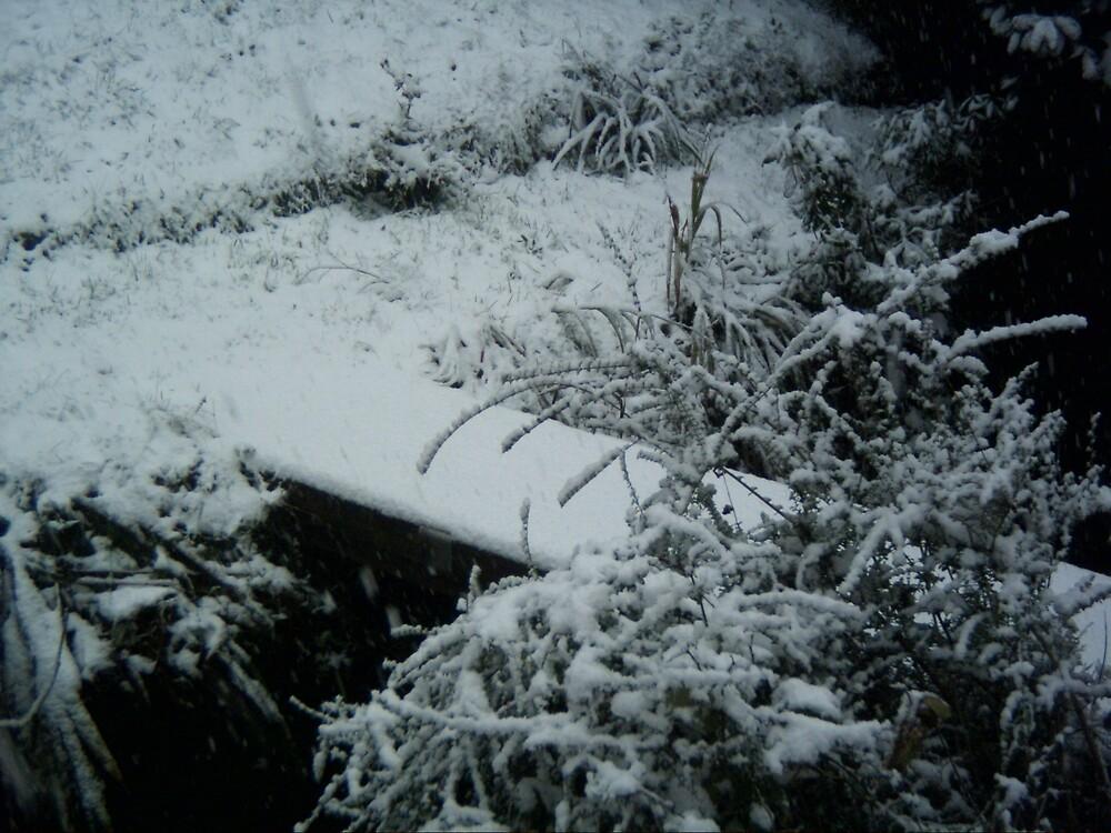 Snowy Bridge by Kernowpics