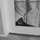Hiding by Jaiided