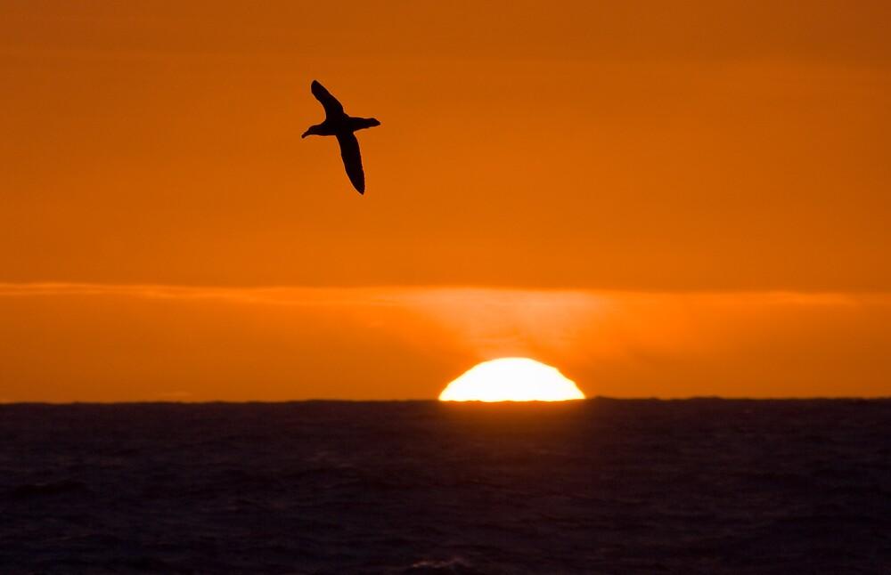 South Atlantic Sunset by Simon Coates
