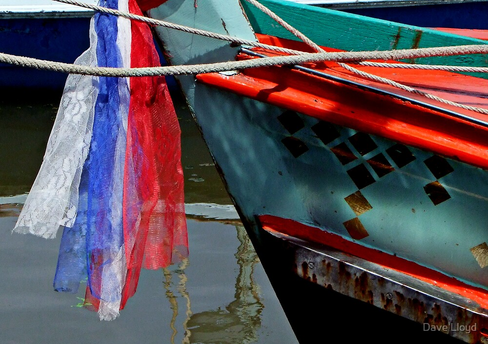 Decorated Boat by Dave Lloyd