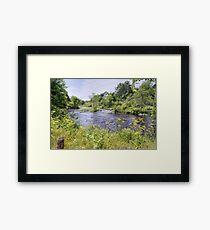 Maine Beauty Framed Print