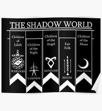 The shadow World - Shadowhunters Poster